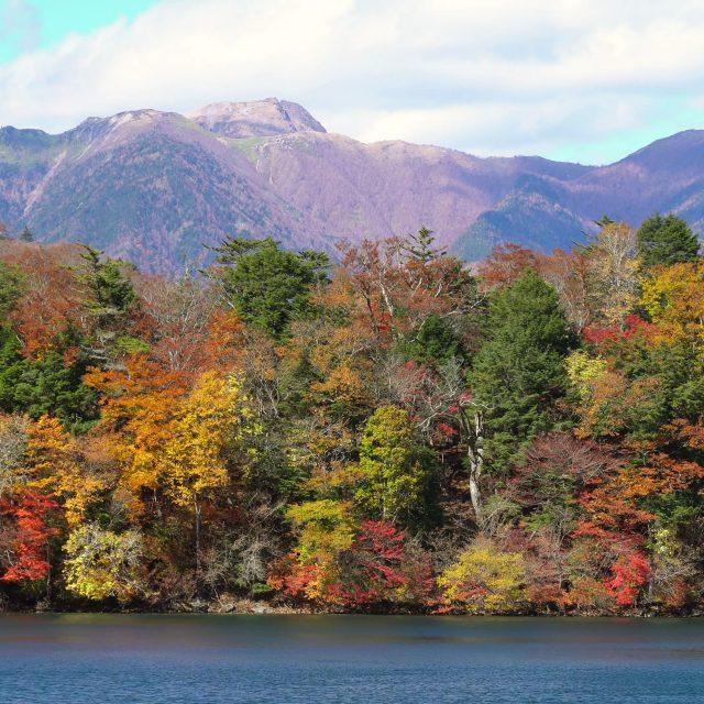 2018年の奥日光の紅葉の風景を公開